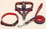 xueyan& Durable einstellbarer Hund Zugseil Kragen Brustgurt, l【2.0*120cm】, red 3 piece set