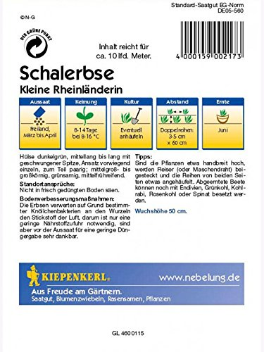 Kiepenkerl Schalerbsen Kleine Rheinländerin