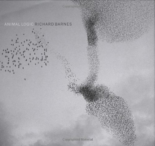 Animal Logic por Richard Barnes