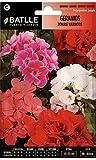 Pelargonium zonale.De 30 a 35 cm de altura, con pétalos de colores variados y vivos.Forma de cultivo. Se siembra en primavera, directamente en las macetas o en semillero para posterior trasplante.Floración. Primavera/verano. En climas cálidos...