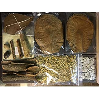 Water treatment set XXL for naturally healthy water in the aquarium and low pH (alder cones, almond leaves… 9