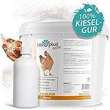 Ida Plus - Kieselgur Natur 12 Liter (3 Kg) - Biologische Kieselerde als Pulver - das Bio Produkt für...
