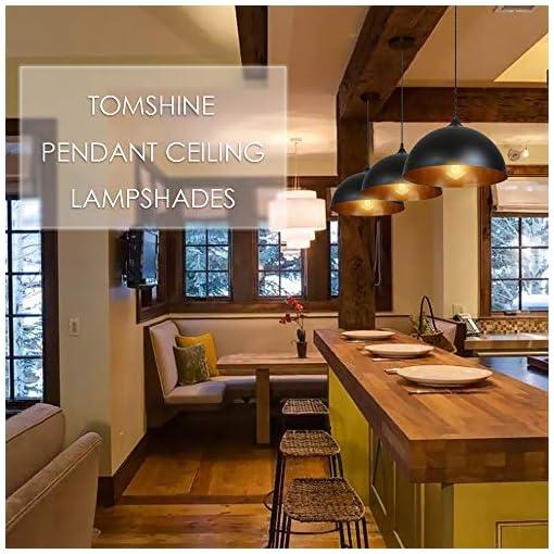 Lampadari a Sospensione Vintage Industriale, Tomshine Lampadario In Ferro Per Il Ristorante Dining Room Kitchen 2PCS