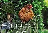 Hühner 2020: Der Sympathische Hühner-Kalender mit den charmanten Namen