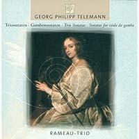 Trio Sonata in C minor, TWV 42:c6: VI. Rejouissance: (Rameau Trio)