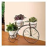 Support pour Plante Tricycle en MéTal - Support pour Panier De Fleurs - IdéAl pour...