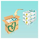 Pampers Premium Protection Gr. 4 (Maxi), 8-16 kg Monatsbox, 168 Windeln