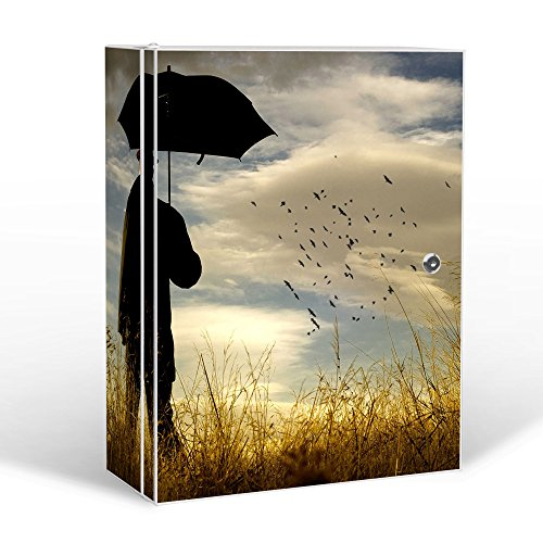 BANJADO Medizinschrank groß abschließbar / Arzneischrank 35x46x15cm / Medikamentenschrank aus Metall weiß mit Motiv Vögel Beobachten