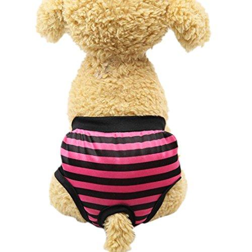 zolimx Productos para Mascotas, Verano Pantalones Sanitarios Mascotas Fisiológicas Bragas Higiénicas Pañales para Perros de Mediano Grande (L, Rosa Caliente)