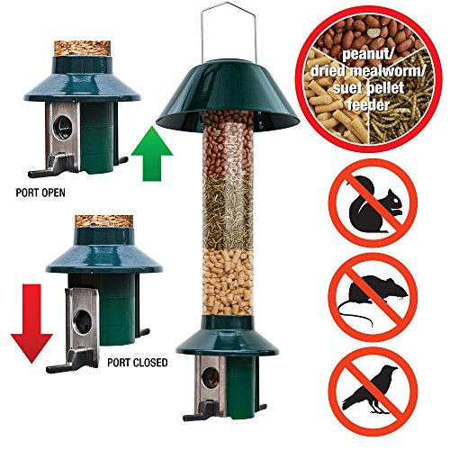 Preisvergleich Produktbild Eichhörnchensichere Vogelfutterstation Roamwild Pest-Off-Futterstation für Erdnüsse