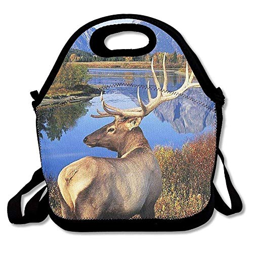 Pzeband Lunch Tote Wild Elk Lunch Boxes Lunch Bags Handbag Food Storage Fits for School Travel Work Outdoor
