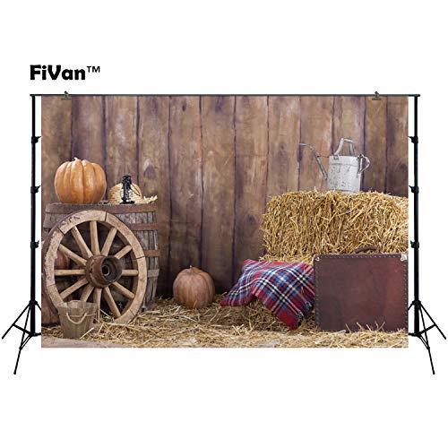 Halloween Foto Hintergrund Photography Hintergrund für Home Party Dekoration Oder Foto Studio Bilder, Vinyl-Kunststoff, blendfreies