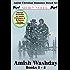Amish Romance Boxed Set (Amish Washday 1-4) (Amish Washdays Books Book 5)