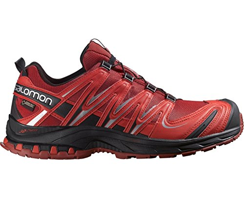 Salomon XA Pro 3D Gtx, Chaussures de Randonnée Homme, Noir Rosso (Flea/Bright Red/Black)