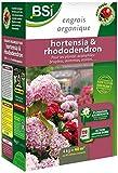 BSI - Concime biologico per ortensia/rododendro, 40 m