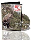 DVD Alpenzoo Innsbruck, er ist Europas höchstgelegenster Zoo. Im Alpenzoo wird nahezu die gesamte alpine Tierwelt von Süd-, Ost- und Nordtirol repräsentiert.