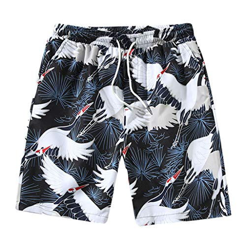 Fashion Loose fit Plus Size Herren Sommer Casual Trend Skinny Fünf Cent StrandhoseHosen Short Jogginghosen Freizeithosen Strumpfhosen Schwarz XXXL -