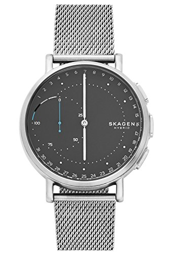 Skagen Connected Signature Hybrid Smartwatch SKT1113