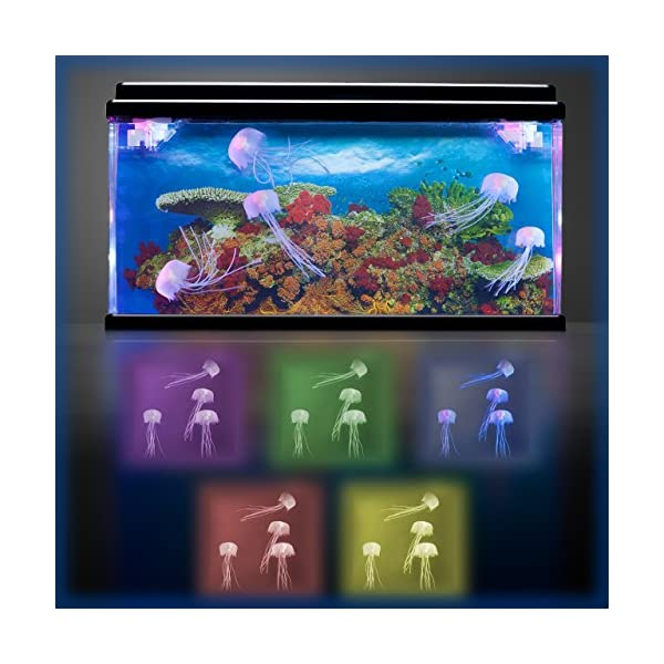Jelly Fish/Sea Turtle Aquarium Mood Lamp with LED Lights 3D Backing – Stunning! Fantastic Gift (Jellyfish)