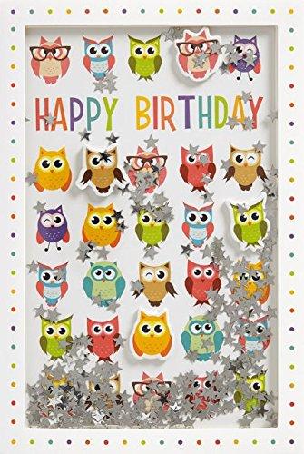 Glückwunschkarte SHAKE-Card Geburtstagskarte mit Eulen bunt 55-1001