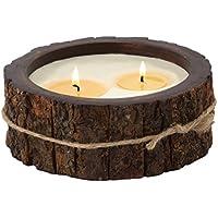 Himalayan Candles Mountain foresta in corteccia, vasi