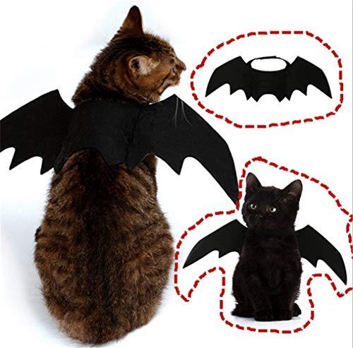 Kostüm Fledermaus Schwarze Katze - YiGaTech Halloween Katze Kleidung Katze Fledermaus Kostüm mit Katze Kragen Fliege für Halloween Party Cosplay Dekoration,Einstellbare Größe