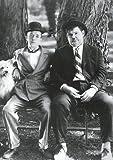 Close Up Laurel & Hardy Poster (67,5cm x 95cm)