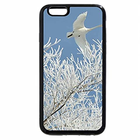 iPhone 6S / iPhone 6 Case (Black) Swans in flight