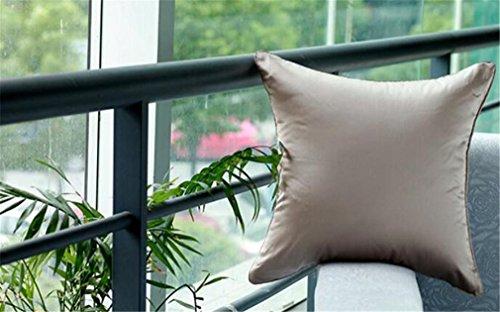 Solido il colore del cuscino in seta