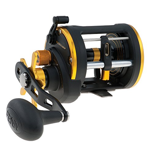 Penn Squall 20 Levelwind Reel Box -