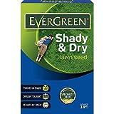 Evergreen Shady Lawn Grass Seed 14 sq m Carton