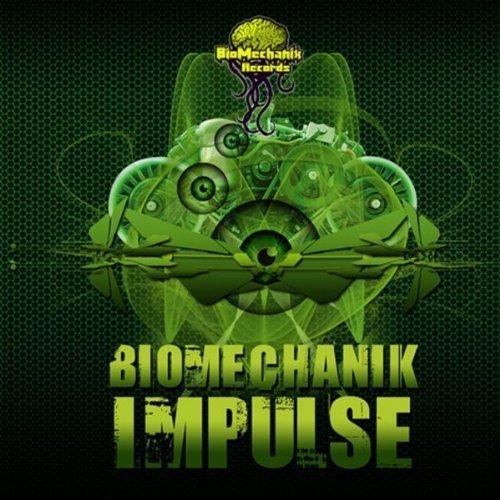 Biomechanik Impulse