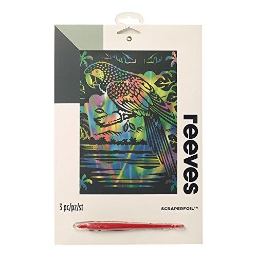 Reeves - Creatividad - Tarjeta de Raspar - Medio, arcoíris - Loro