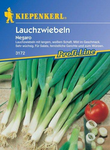 Lauchzwiebeln 'Negaro'