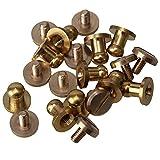 Lot de 10 rivets pour le cuir - À visser - En laiton - BQLZR, Doré, BQLZRN00288