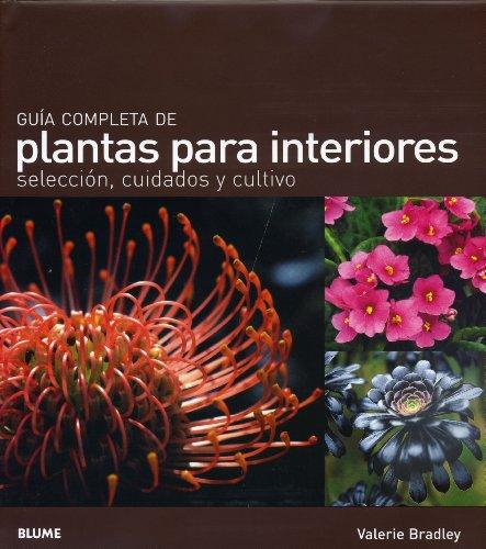 guia-completa-de-plantas-para-interiores-seleccion-cuidados-y-cultivo