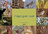 Vögel ganz nah (Wandkalender 2020 DIN A4 quer): Seltene einheimische Vögel aus nächster Nähe fotografiert (Monatskalender, 14 Seiten ) (CALVENDO Tiere)