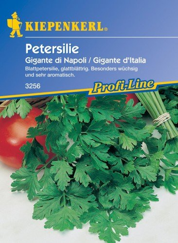 Sperli Gemüsesamen Petersilie Gigante di Napoli, grün