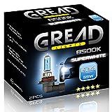 2x HB4 Halogen Lampen in Xenon Optik von Gread Lights | Super White | 8500k 55W | E-Prüfzeichen | 100% Passgenauigkeit & lange Lebensdauer