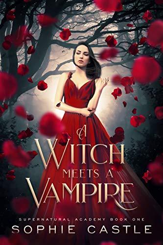 A Witch Meets A Vampire (Supernatural Academy Book 1 ...