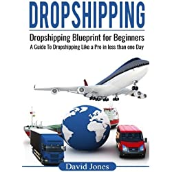 Dropshipping: Dropshipping Blueprint for Beginners - A Guide to Dropshipping Like a Pro in Less than a Day