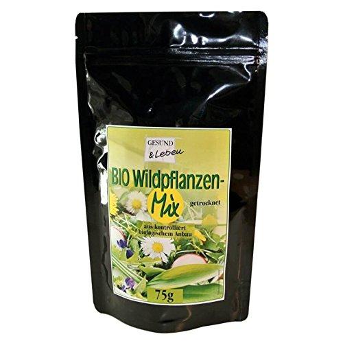 Super Smoothie Mix (Gesund+Leben Wildpflanzen-Mix getrocknet 75g (bio, roh, vegan) Wildkräuter)