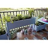 Orto urbano GREENLAND speciale balconi 120x32x75 cm. Colore: blu lavanda