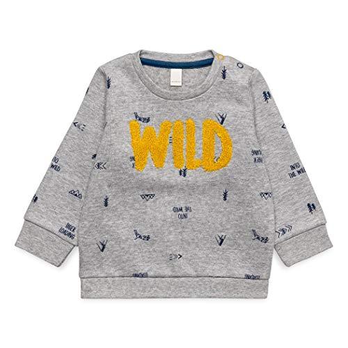 ESPRIT KIDS Baby-Jungen Sweatshirt, Grau (Mid Heather Grey 260), 86
