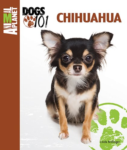 Chihuahua (Animal Planet Dogs 101) -
