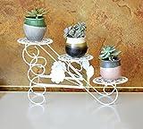 LJYHJ Blumentopf Lagerung Blumenständer Eisen Kunst Montage Desktop Fensterbank Topf Rack Wohnzimmer Indoor Balkon Pflanze Bonsai Zierrahmen Garten Regal (Farbe : Weiß)