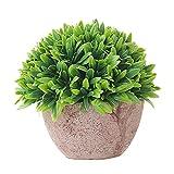 OPSLEA Künstliche Pflanze Topf Mini Gefälschte Pflanze Dekorative Lebensechte Blume Grünpflanzen