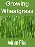 Growing Wheatgrass: How to grow wheatgrass and the benefits of wheatgrass explained. Growing your own wheatgrass will give you all the wheatgrass benefits and wheatgrass juice benefits