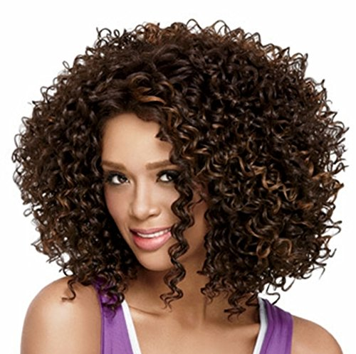 African American Perücken synthetische kurze lockige Afro lockiges Haar für schwarze (Synthetische Haar Lockige)