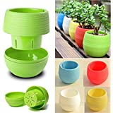 Sellify Blue : 2016 2Pcs/Set Mini Plastic Flower Pot Succulent Plant Flowerpot For Home Office Decoration 4 Color Garden Supplies Y1S1